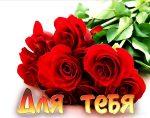 Цветы самые красивые для любимой – Красивые картинки для любимой девушки (35 фото) • Прикольные картинки и юмор