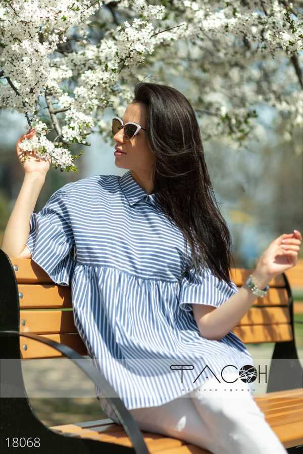 1eca061f265 Рубашки и блузы в современном женском гардеробе  особенности и разновидности