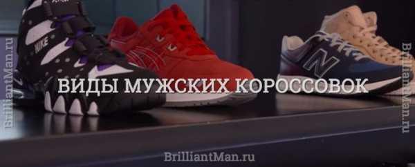 88fdbd2c Виды кроссовок – виды, производители и отзывы. Как правильно выбрать ...